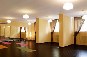 Шторы для танцевальных и хореографических залов